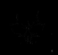 GeekPrank Hacker Typer - 𝗧𝗵𝗲 𝗕𝗲𝘀𝘁 𝗛𝗮𝗰𝗸𝗲𝗿 𝗦𝗶𝗺𝘂𝗹𝗮𝘁𝗼𝗿